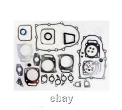 Briggs & Stratton 808704 Engine Overhaul Refresh Gasket Set Kit AND with Oil Seals