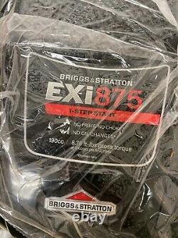 Briggs & Stratton exi875 125P02-0012-F1